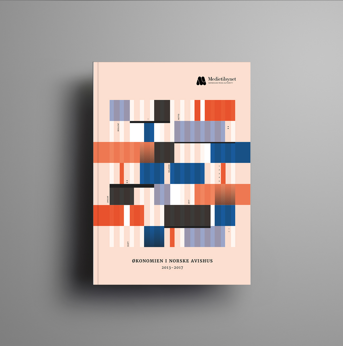 medietilsynet s financial report cover on behance