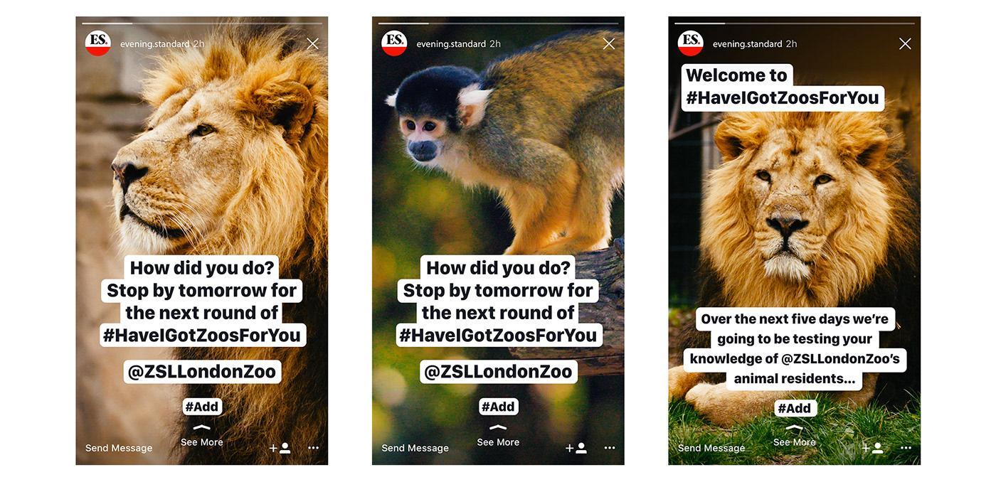 ads London Zoo social zsl