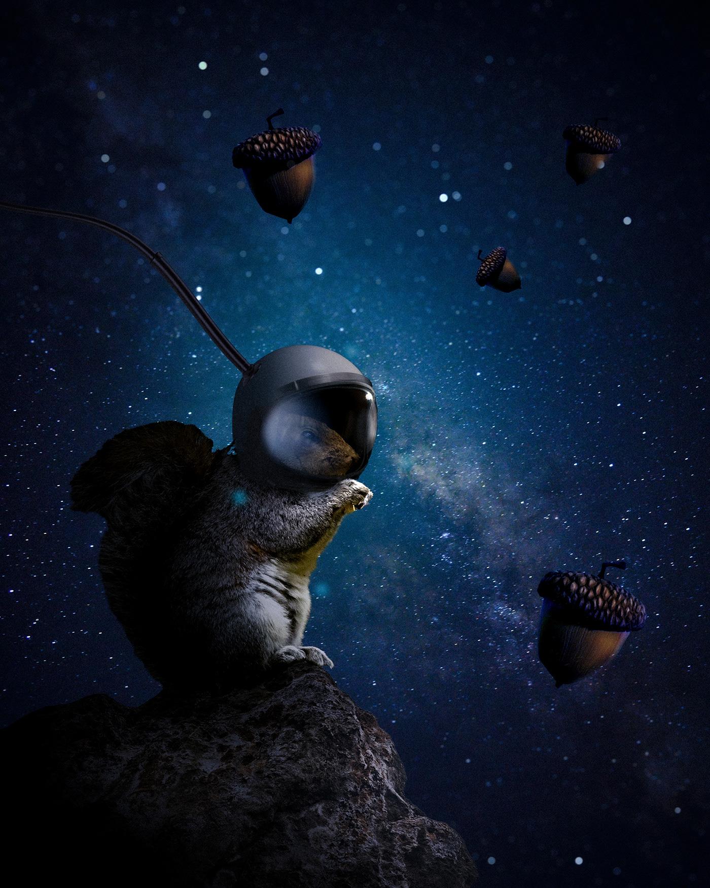 fantasy image Photo Manipulation  photoshop poster