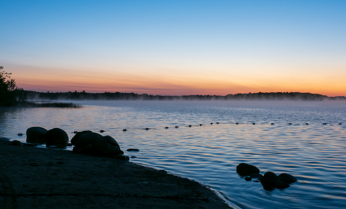 backlighting countryside cows Kawarthas Landscape mist Nature Rice Lake rural Sunrise