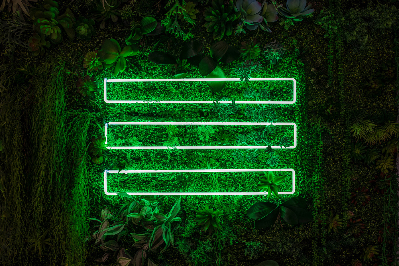 naming brand Health green identity architecture Packaging restaurant Food  neon