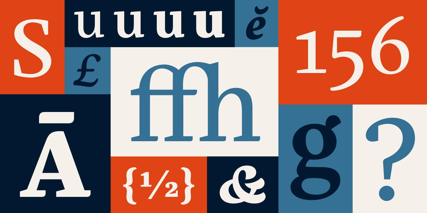 arabic rosetta type Typeface  font  foundry  elena  schneider  serif book contemporary stylish crisp business