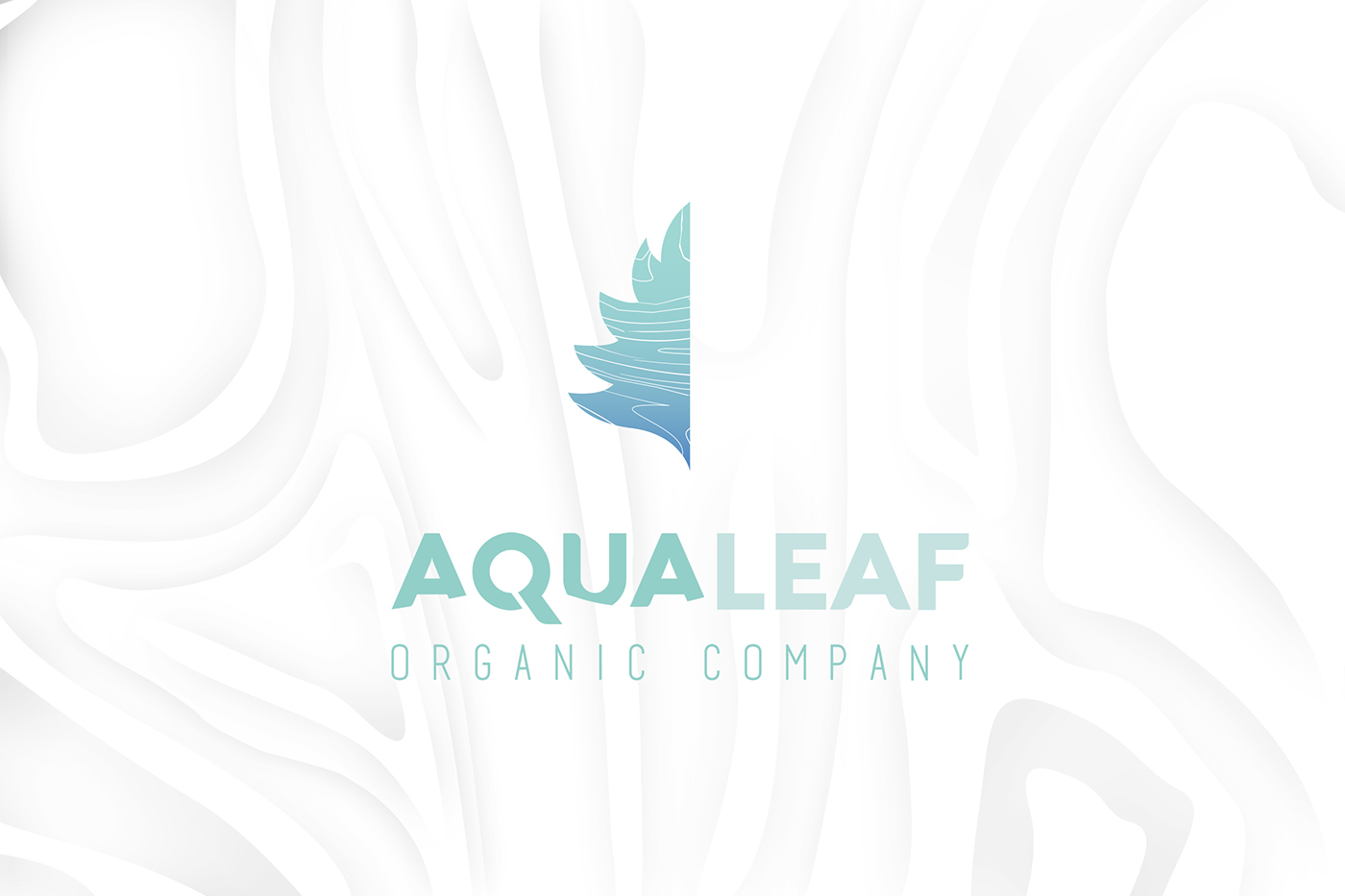 herbs vegetables organic salad labels lettuce microgreens hydroponic branding  restaurant