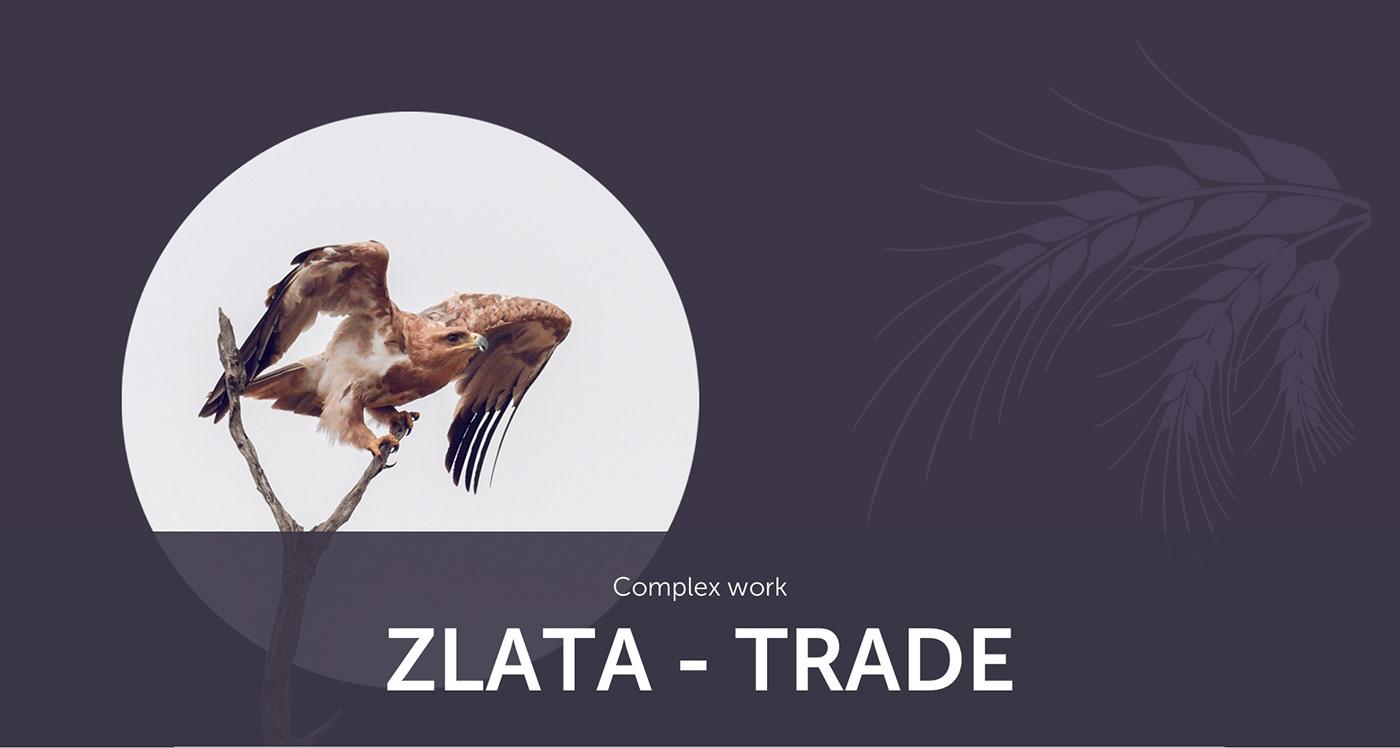 complex work Corporate-site logo Logotype UI ui ux ux Website