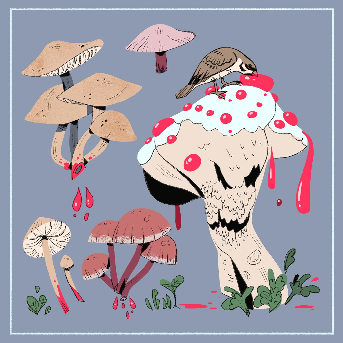 corvid bee bear mushroom ILLUSTRATION