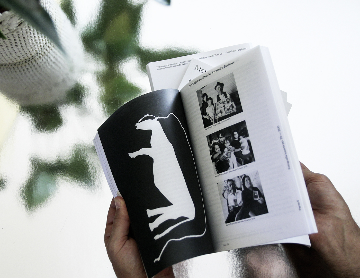 research book editorial basilicata lucania IsiaUrbino territory memories identity southitaly south