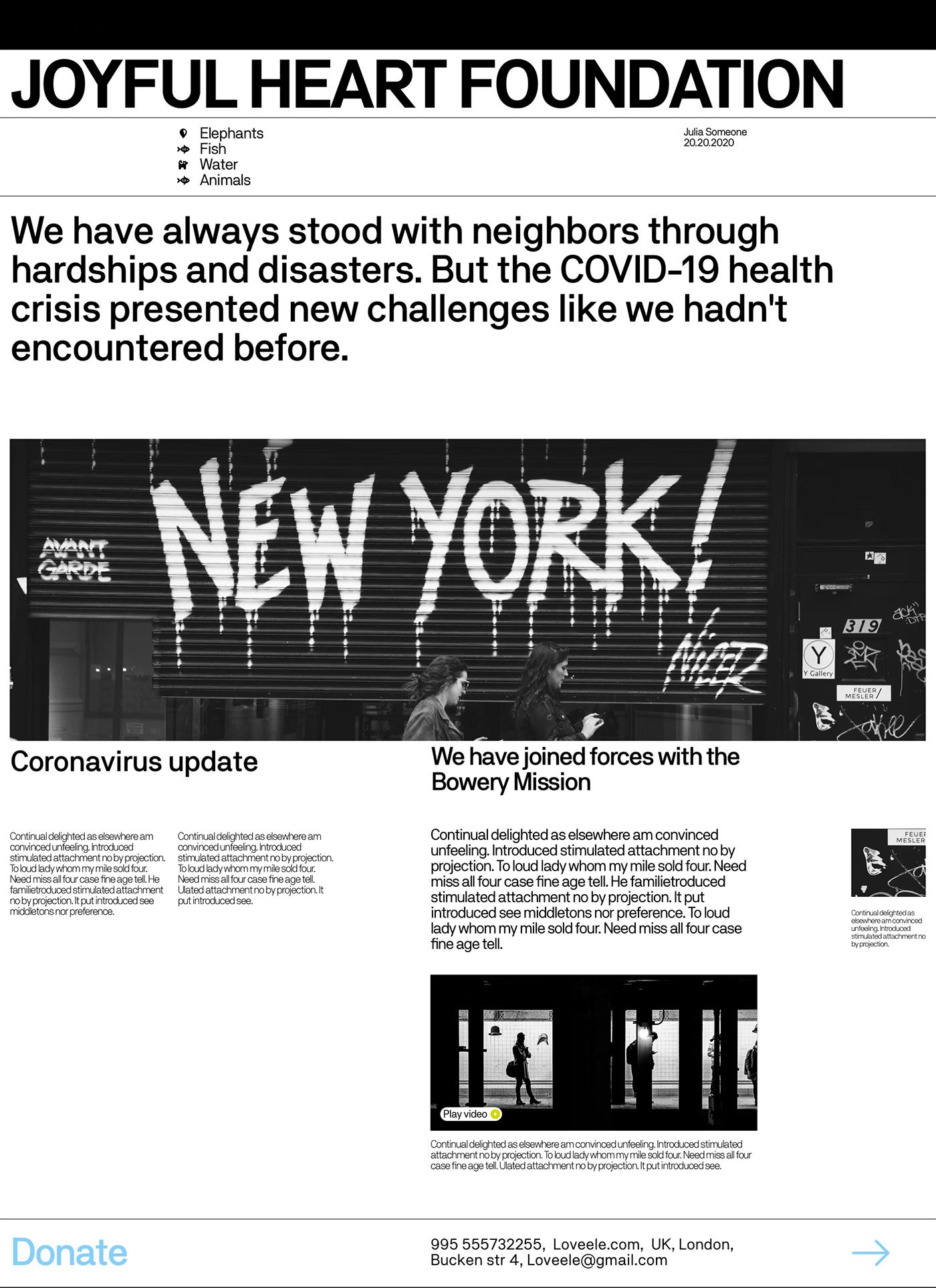 NY mission