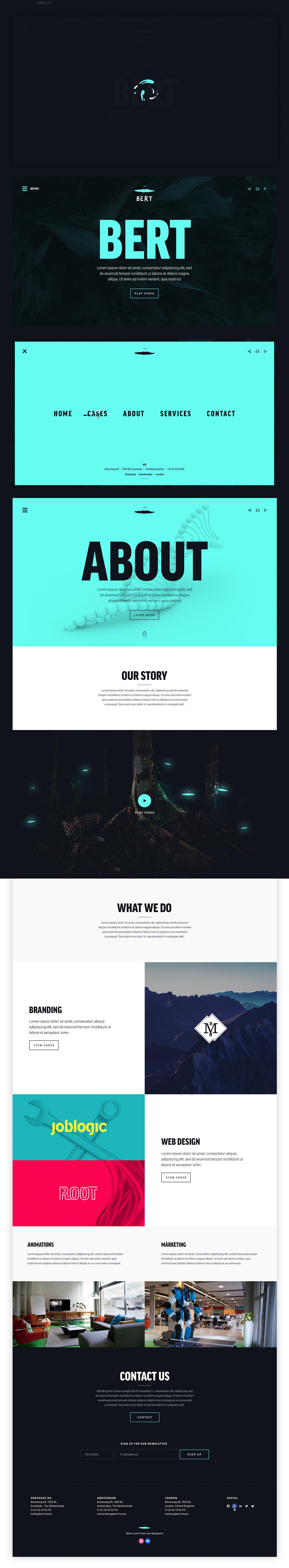 branding  Website agency webdesig animations homepage flat