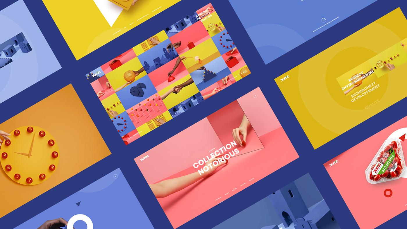 UI / UX motion design Tomato mobile Website Photography  minimal color branding  clean
