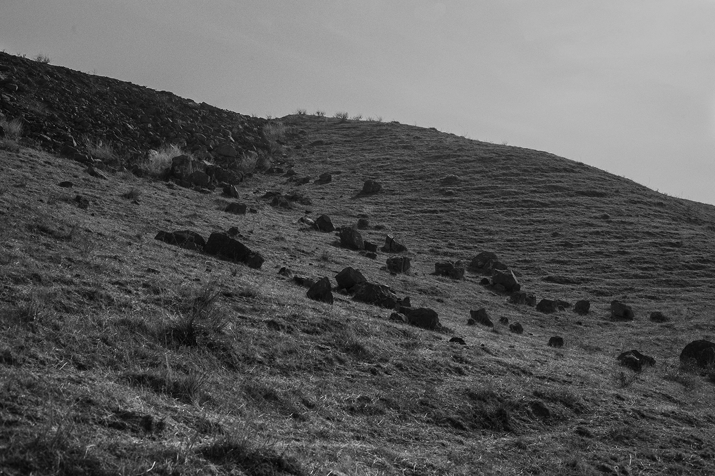 art direction  black and white canon 5D cinematography Landscape landscape photography Photography  steppe