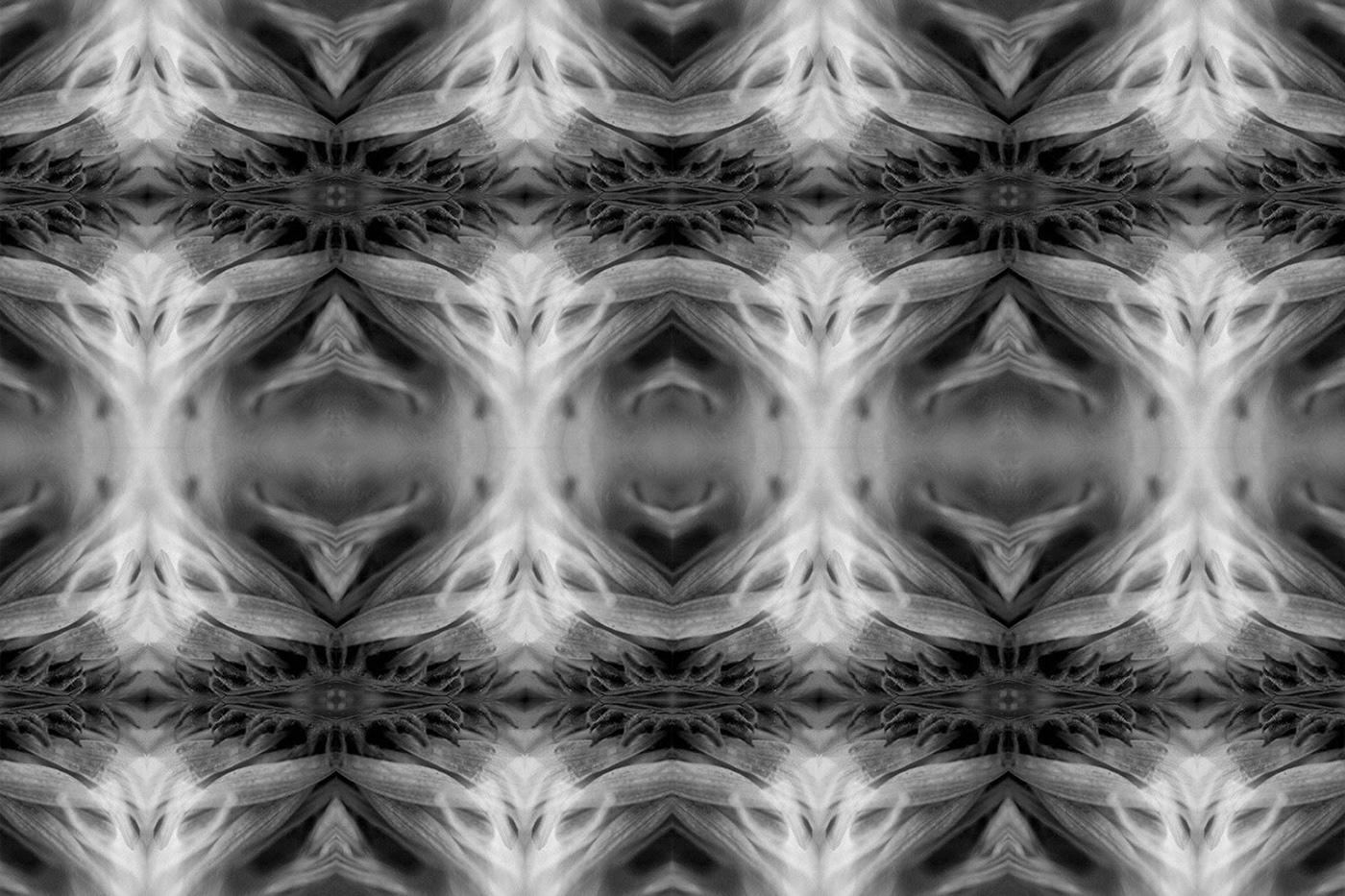 Kaleidoscope art experimentation using a flower to create a pattern.