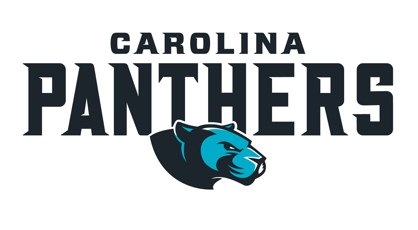 carolina panthers - HD 1400×770
