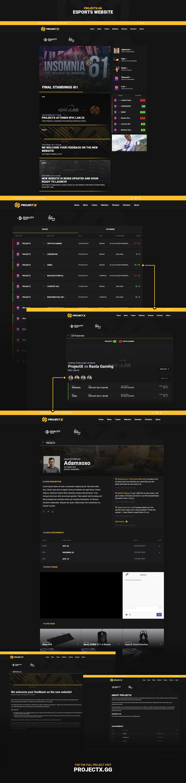 esports design Esports Website Design CSGO Team Website Website Design