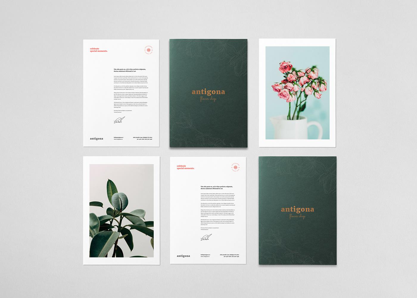 Flower Shop boutique Flowers botanical plants Plant Shop Floral design florist Flower shop branding