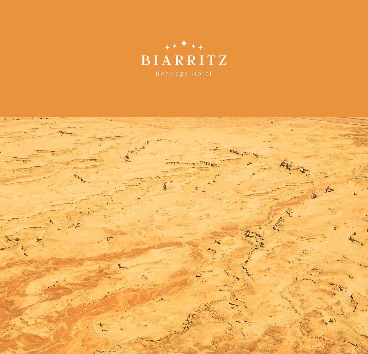 logos Doughnuts Nature books france Biarritz branding  typography