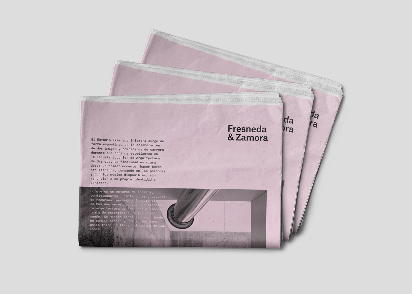 brand design editorial design  architecture Fresneda & Zamora arquitectura granada identity Plácida