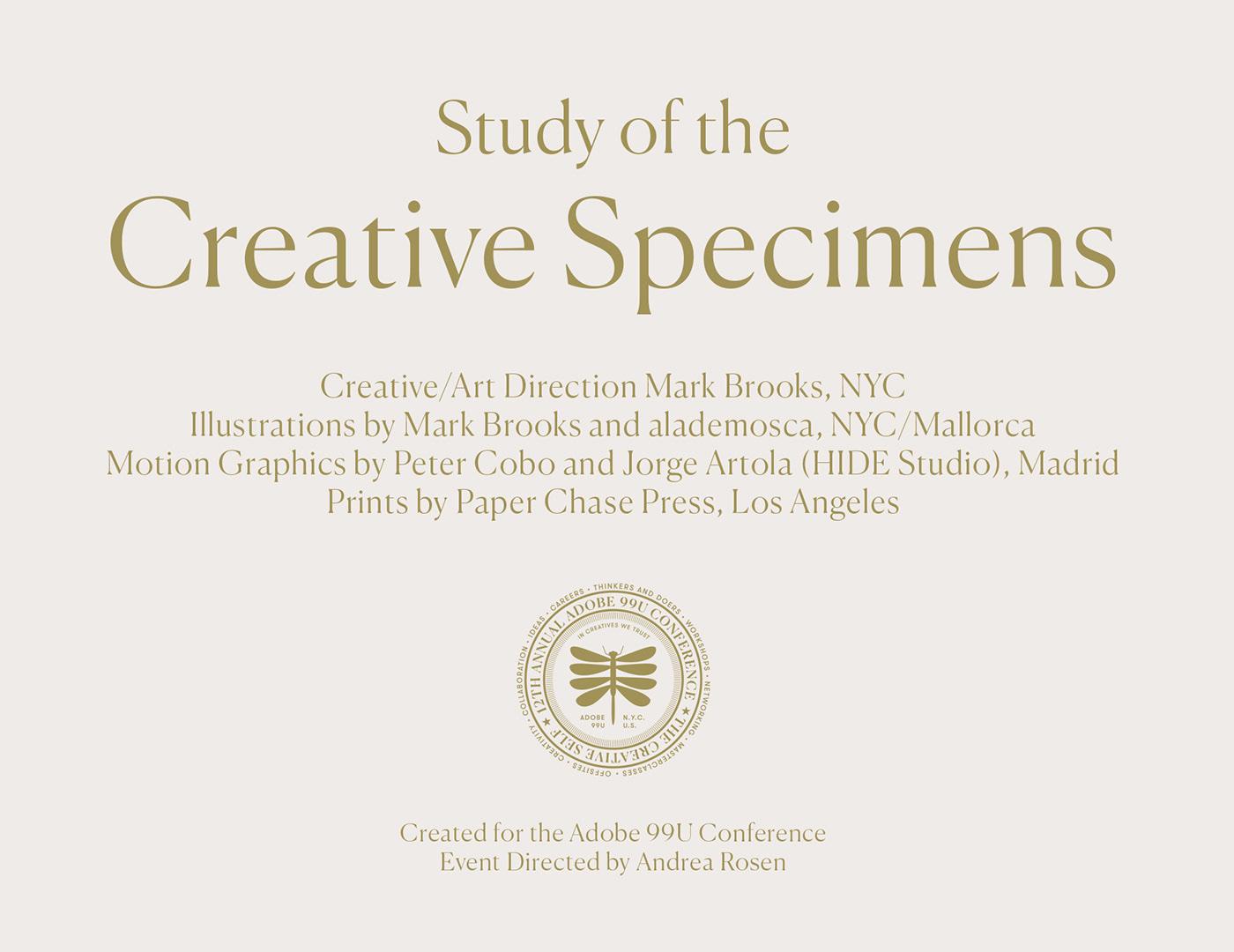 art direction  brand identity branding  Event Design graphic design  ILLUSTRATION  motion graphics  Poster Design print