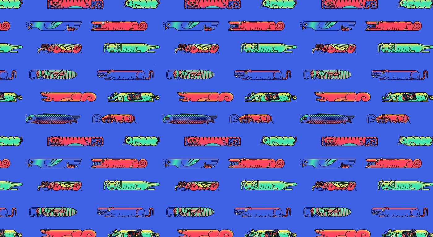 llamarada animation  motion graphics