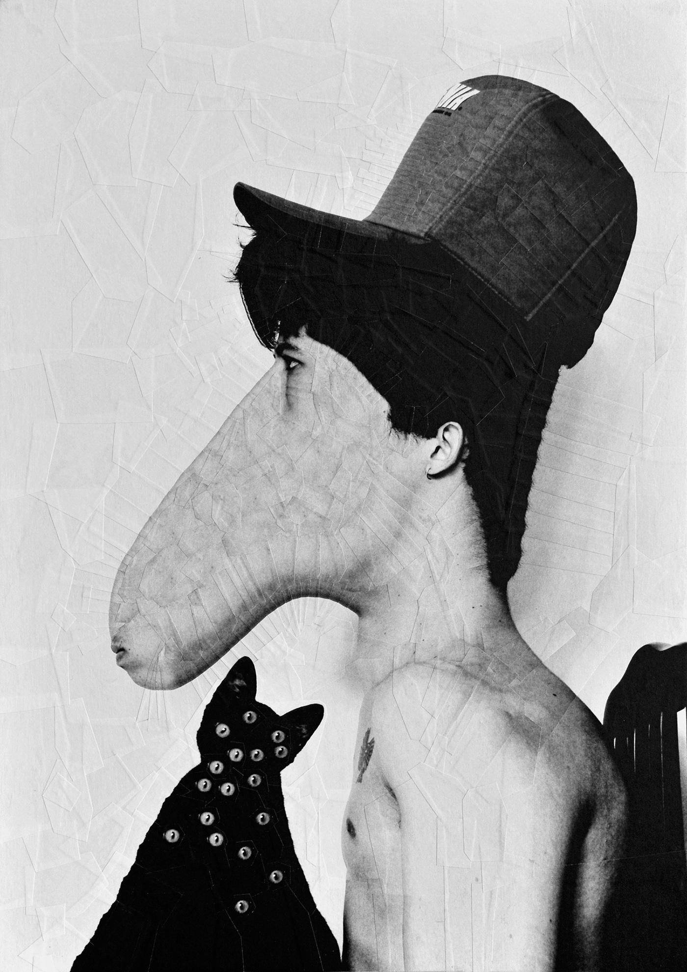 portraits portrait equine collage art paper art