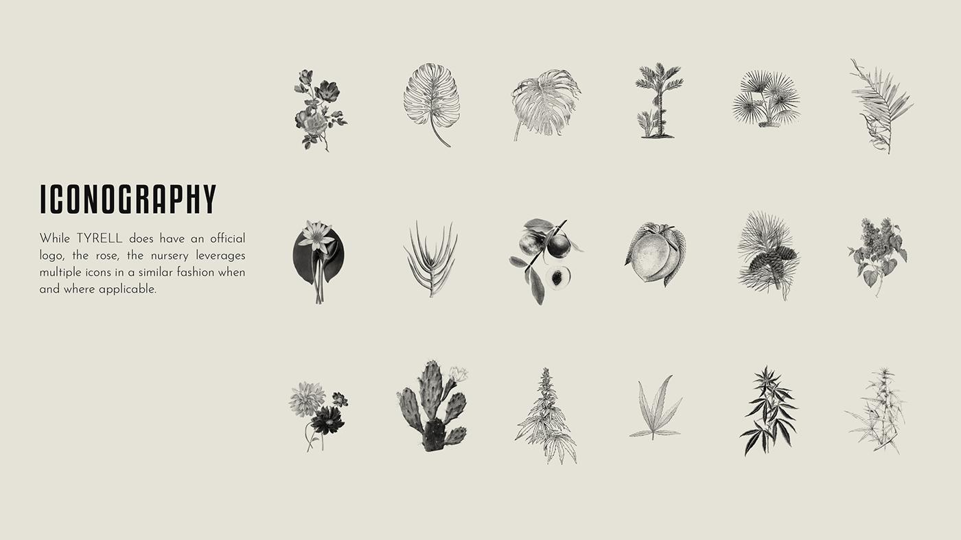 Style Guide branding  garden nursery logo brand guide