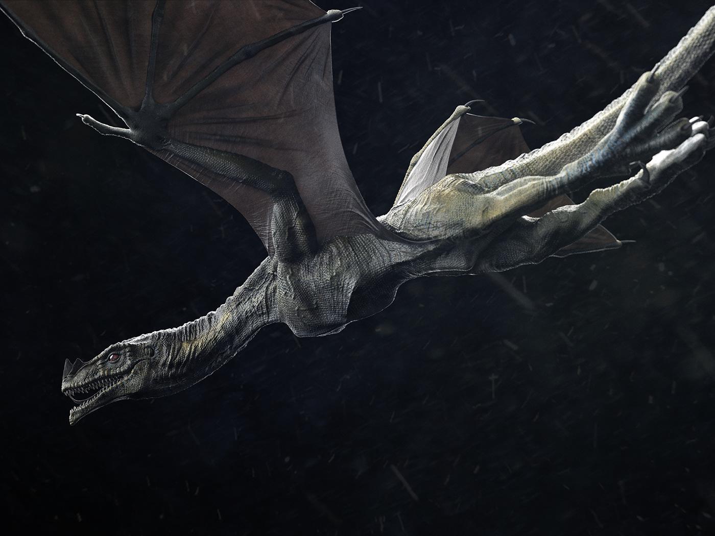 Image may contain: animal, fish and bat