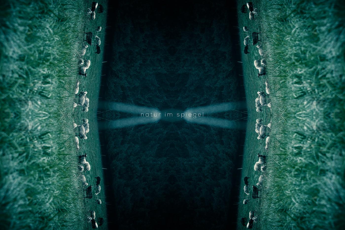 Natur im spiegel on behance for Spiegel digital download