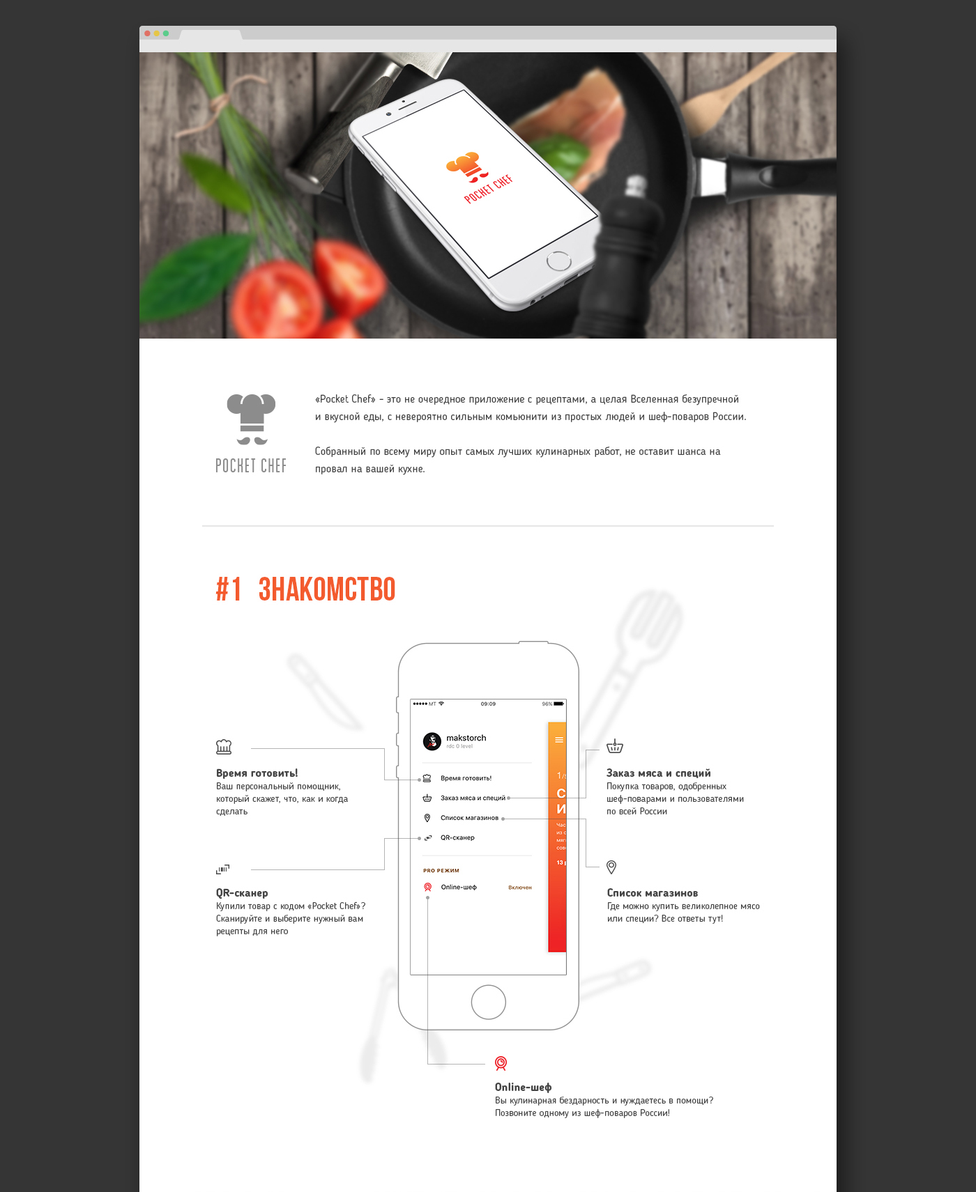Pocket Chef Concept