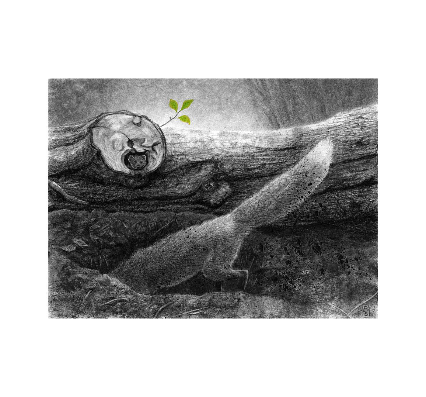 burrow forest FOX Tree  weasel