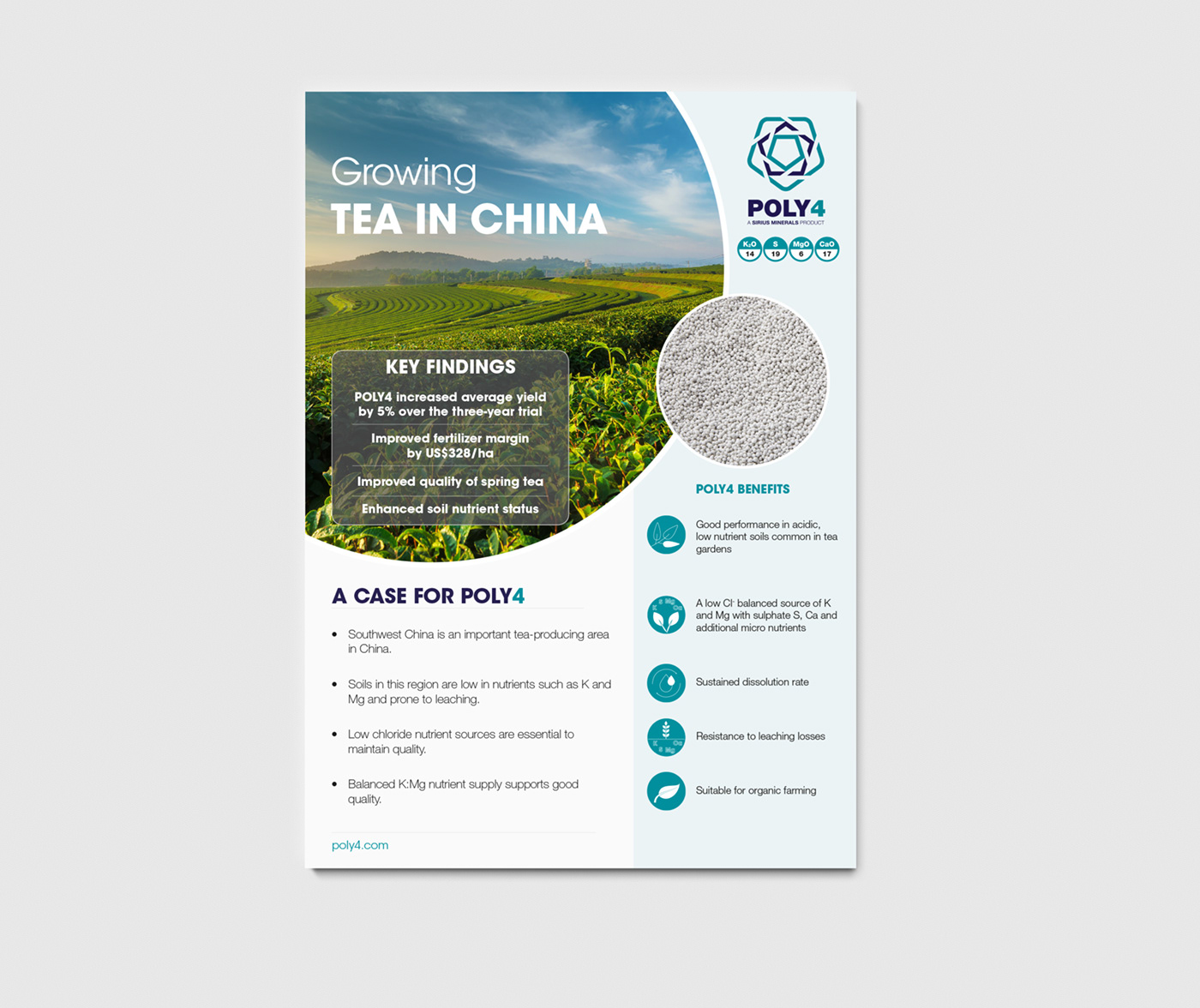 One pager design on Behance