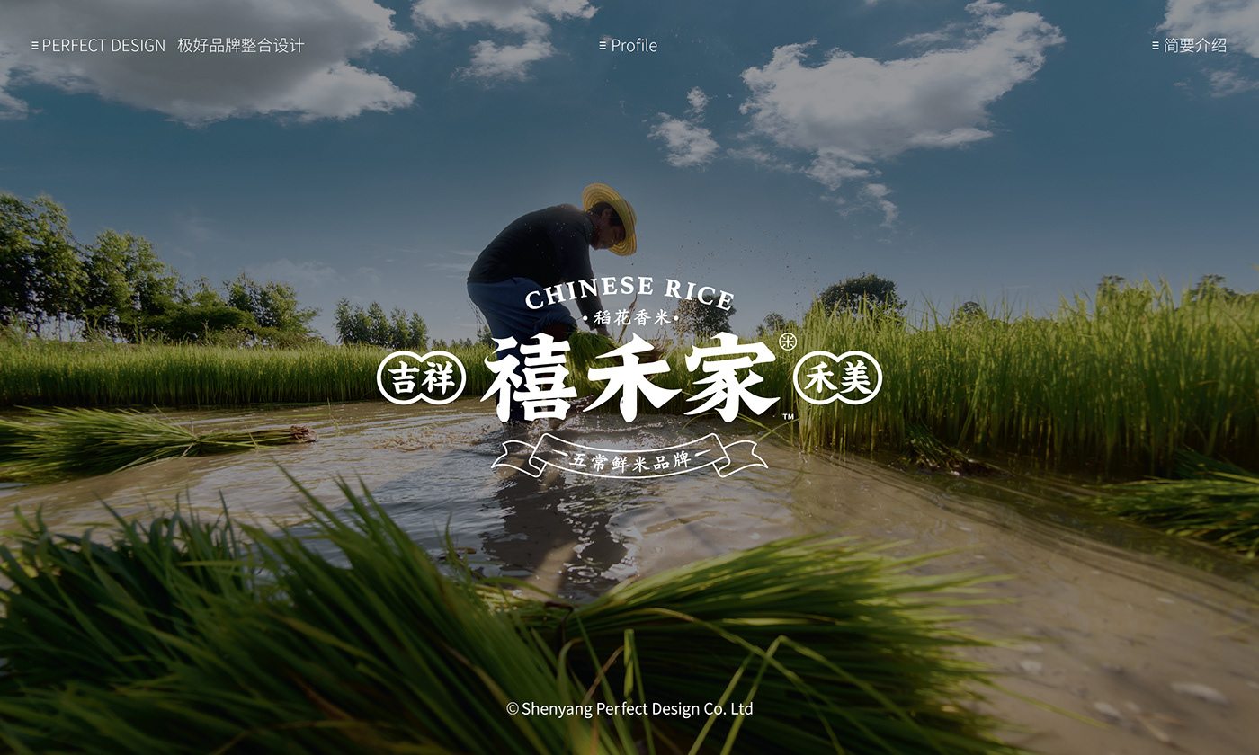 brand branding  logo package Packaging Rice 中国五常 中国风   包装 大米