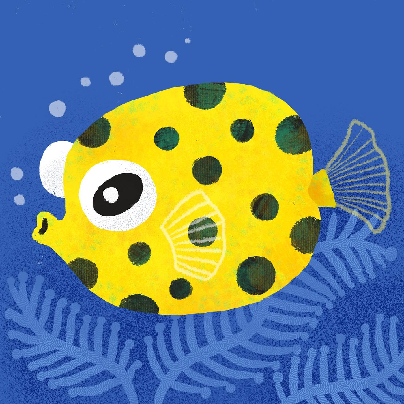 animal ILLUSTRATION  marinelife wildlife