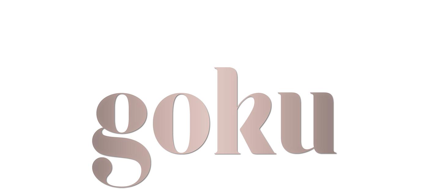 elegant art deco commercial serif fonts business card modern magazine Fashion  Didone