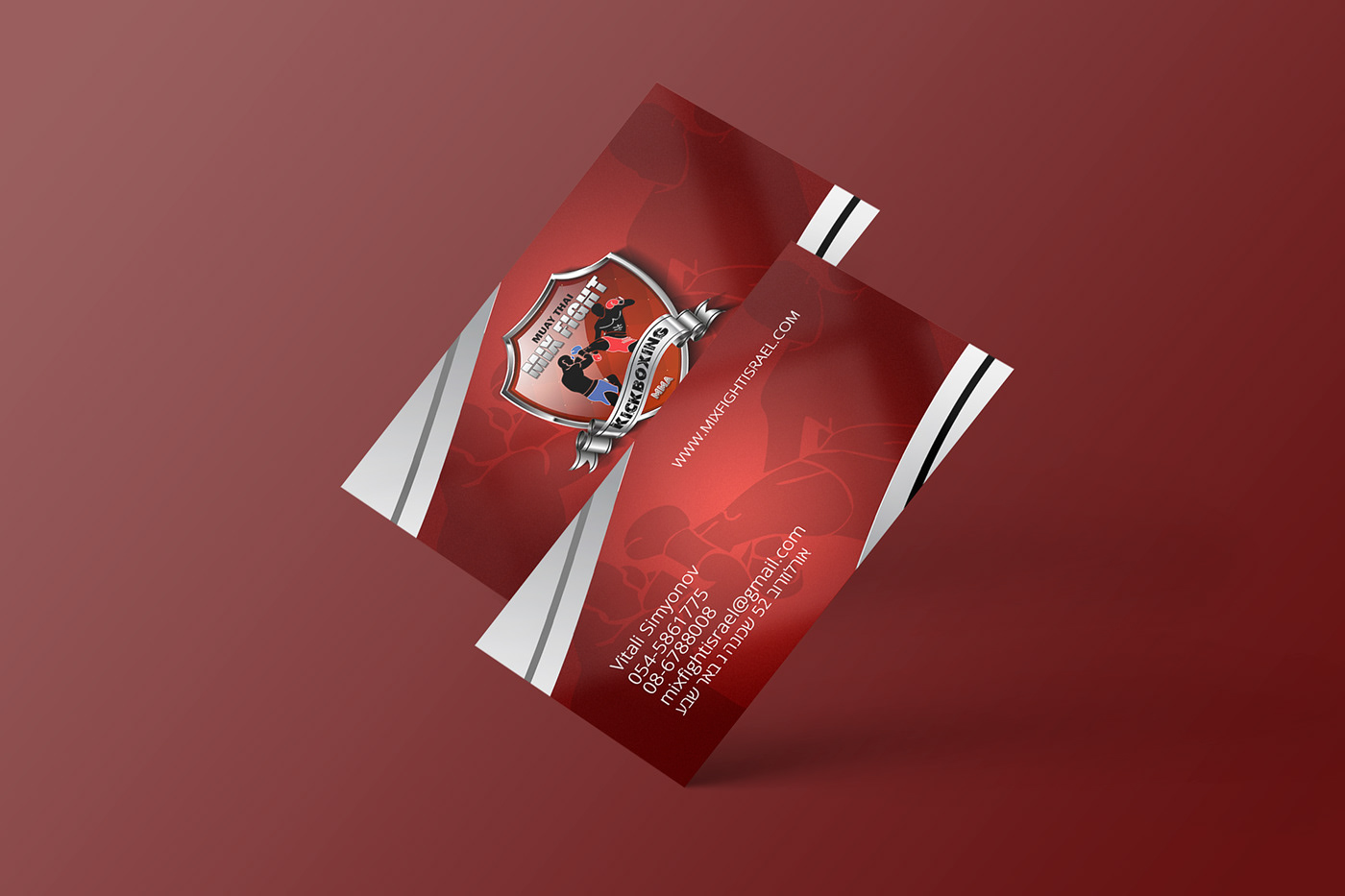 brand branding  business card Fightshool folder israel logo