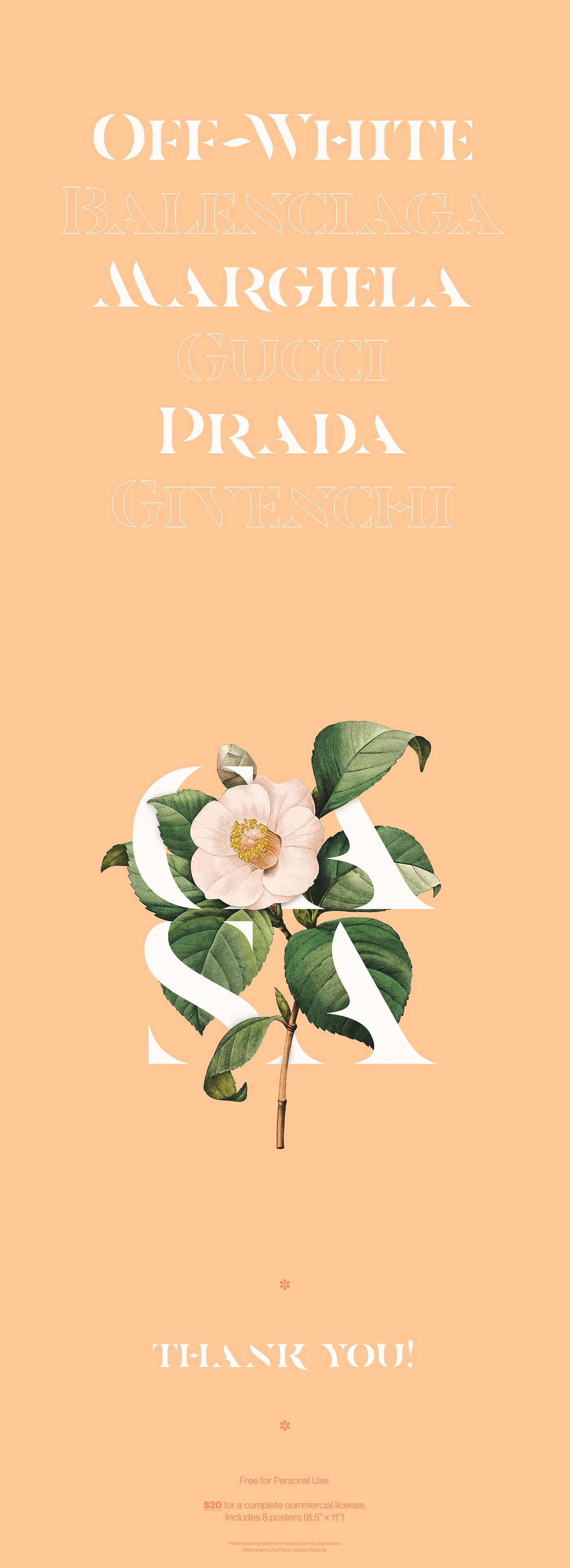 font free Free font Display curves Fashion  serif elegant flower soft