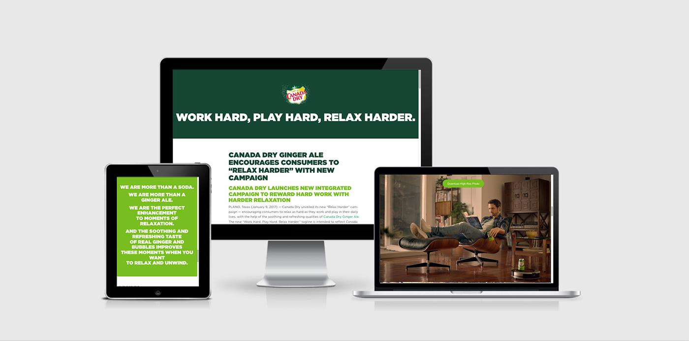 Web Design  web development  art direction  html5 css3 typography