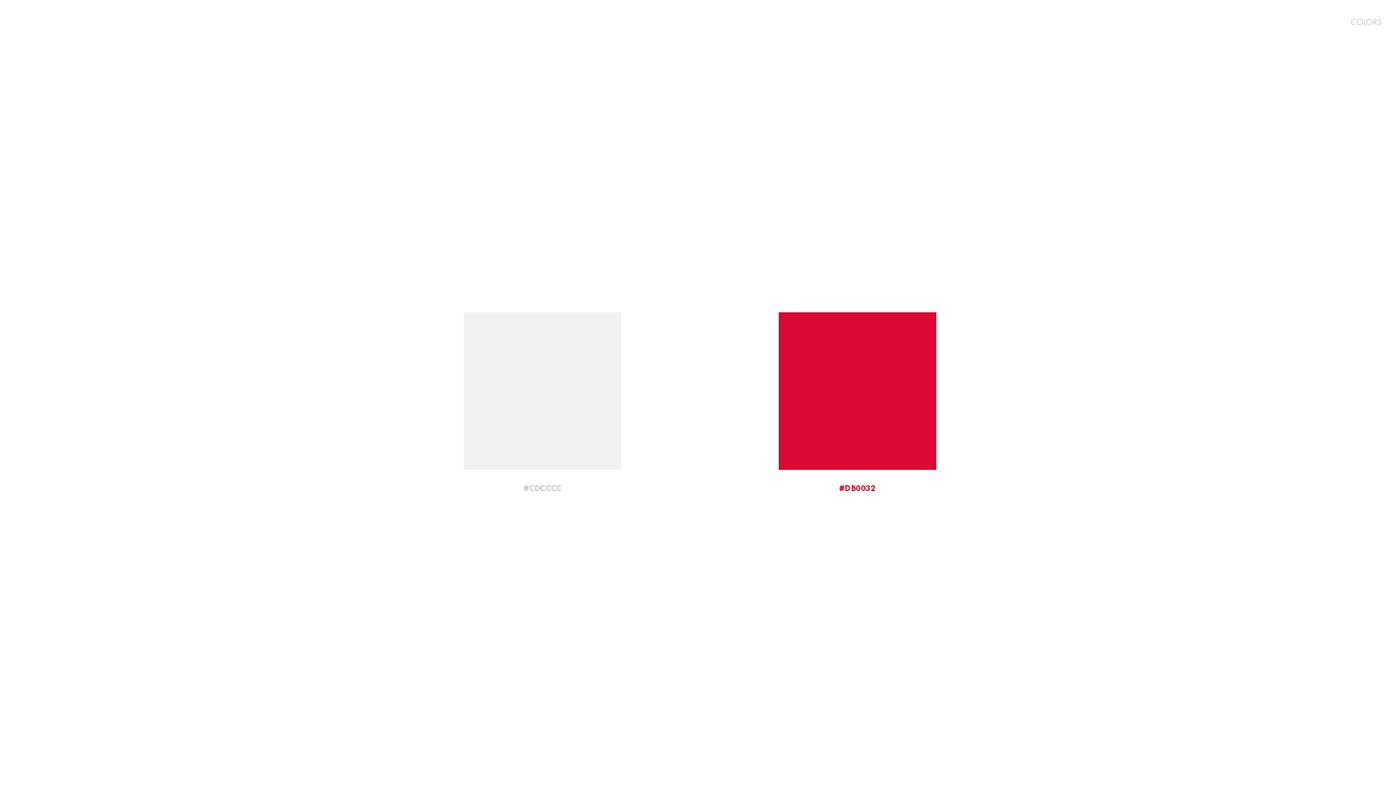 snow winter cold White minimal design branding  Soseki Natsume Cat Switzerland contrast