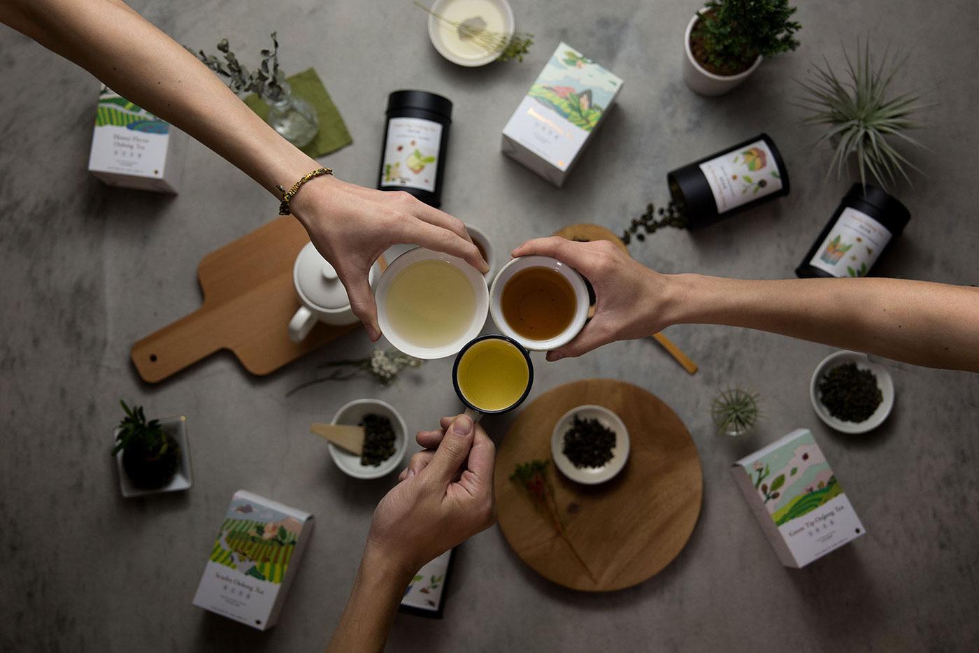 豐富的15款茶葉包裝設計欣賞