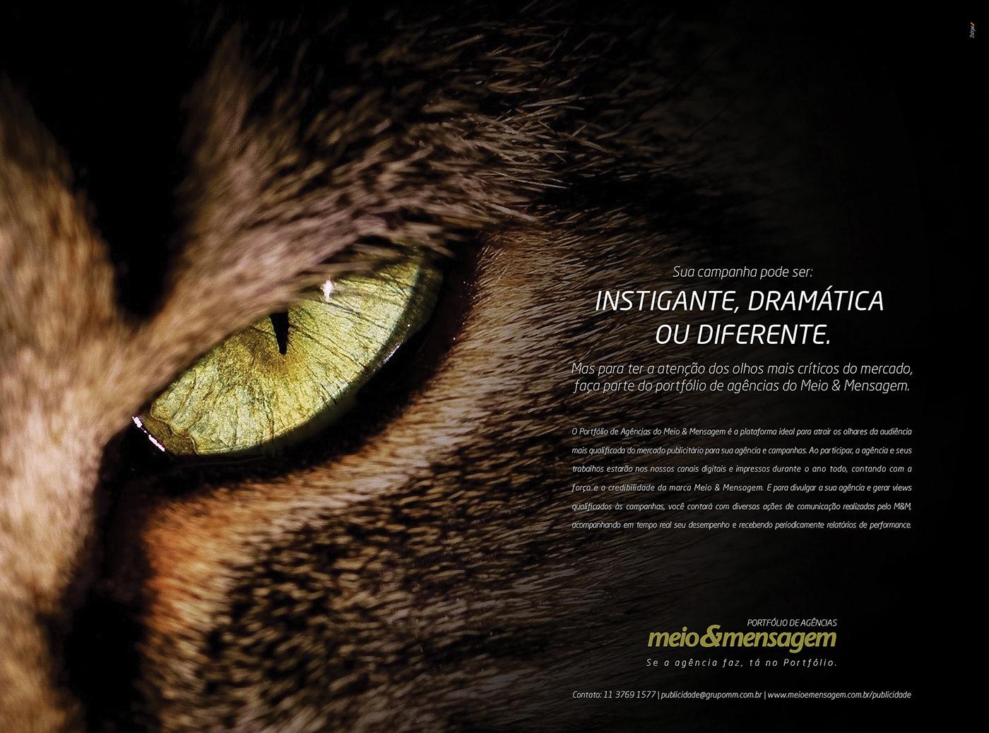 Advertisign Creative Direction  Art Director campanha publicitária publicidade Direção de arte design gráfico Meio & Mensagem