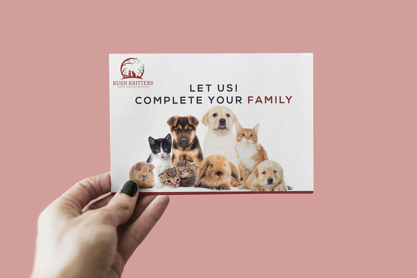Image may contain: carnivore, dog and animal