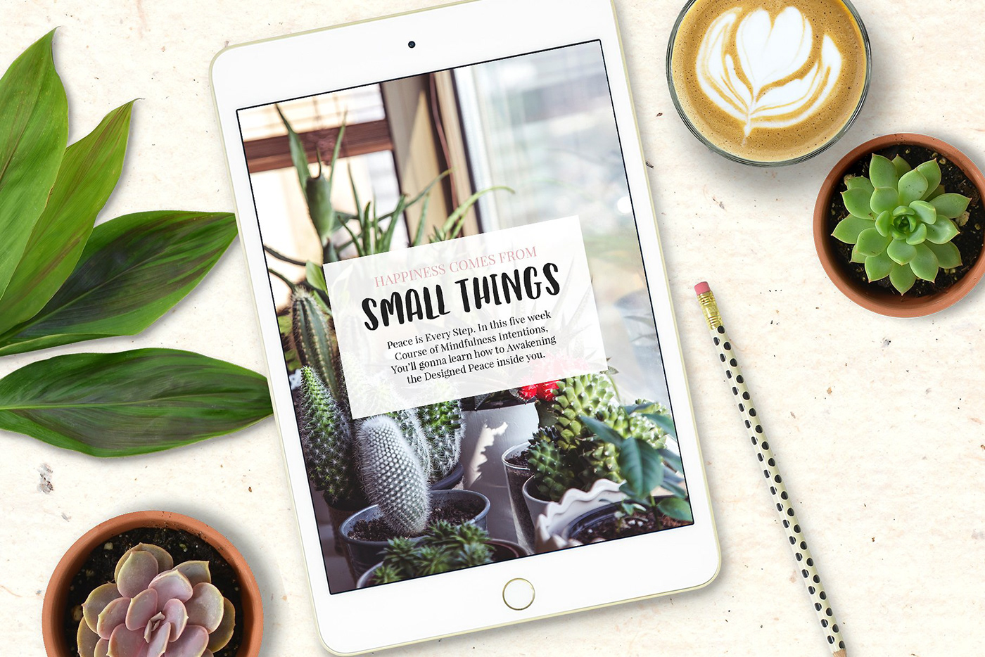 Catch Feels - Lovely and Quirky font FREE DOWNLOAD! on Behance