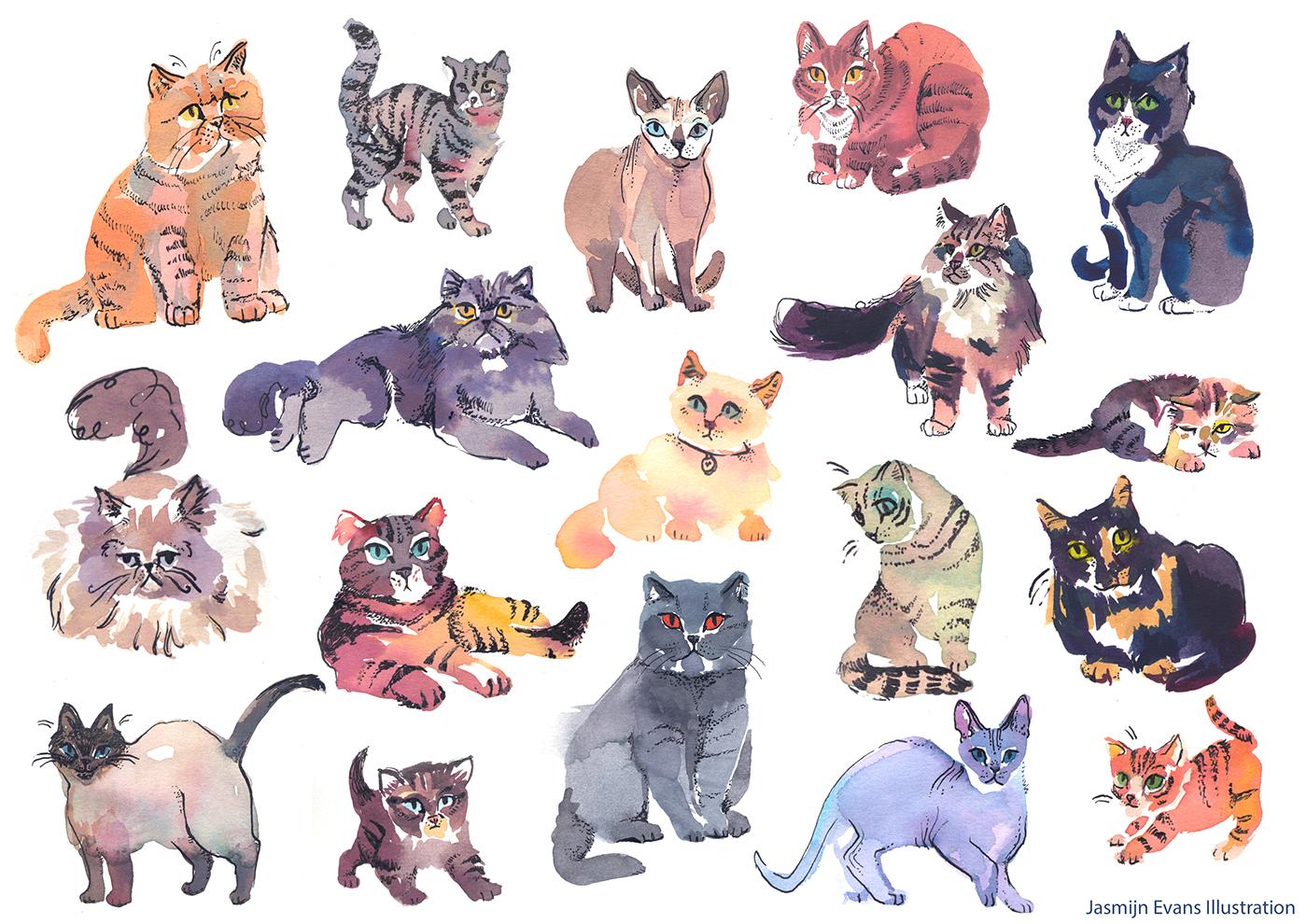 高質感的19款貓咪圖案欣賞