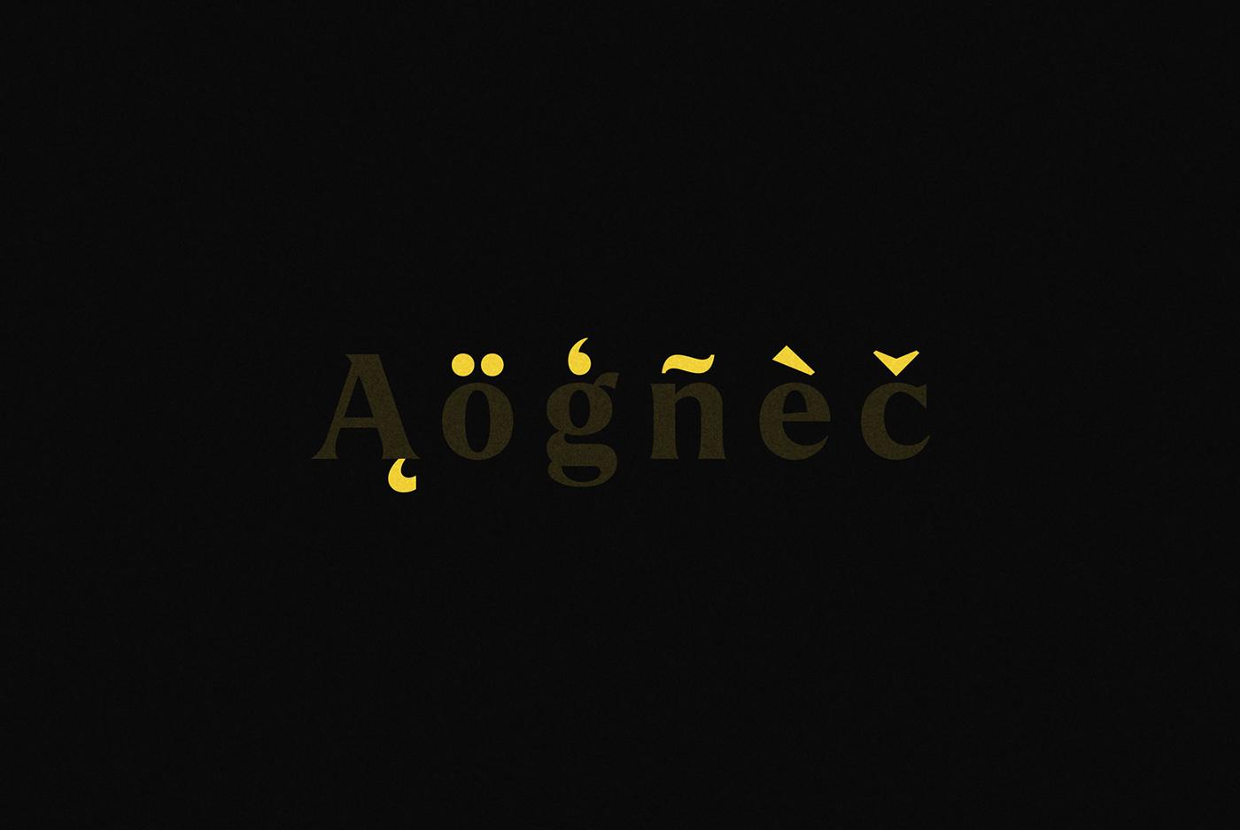 design Display font graphic design  type Typeface typo typography