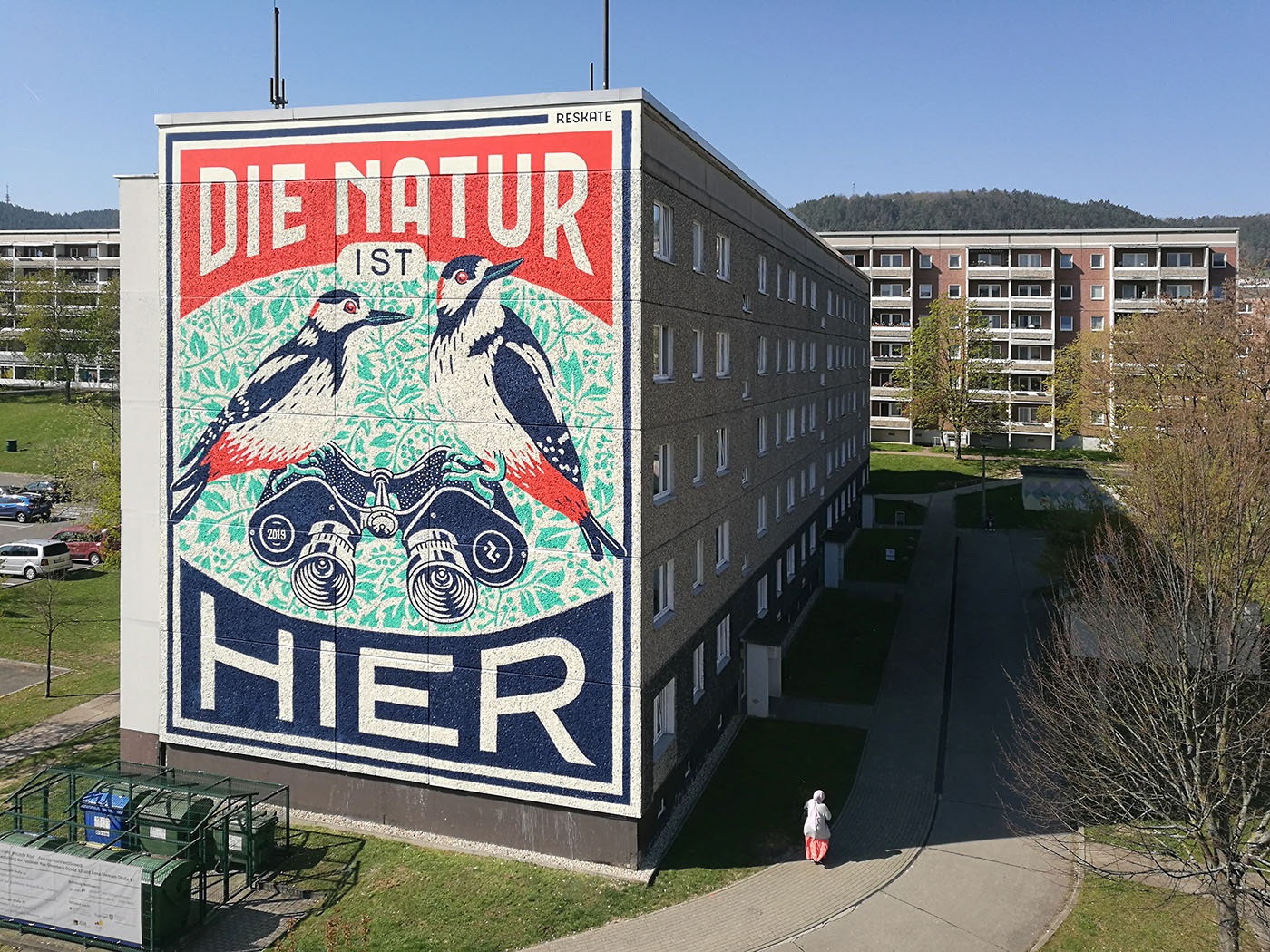 natur woodpecker bird rotulación typography   tipografia Muralism sign-painting signpainting Mural