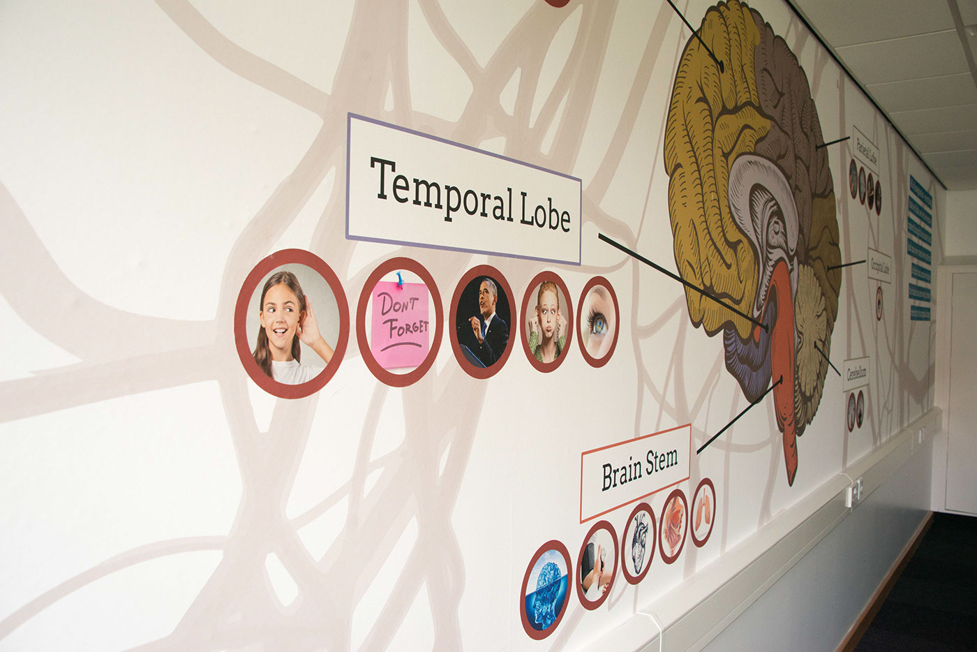 Classroom Design Psychology ~ Psychology classroom design on behance