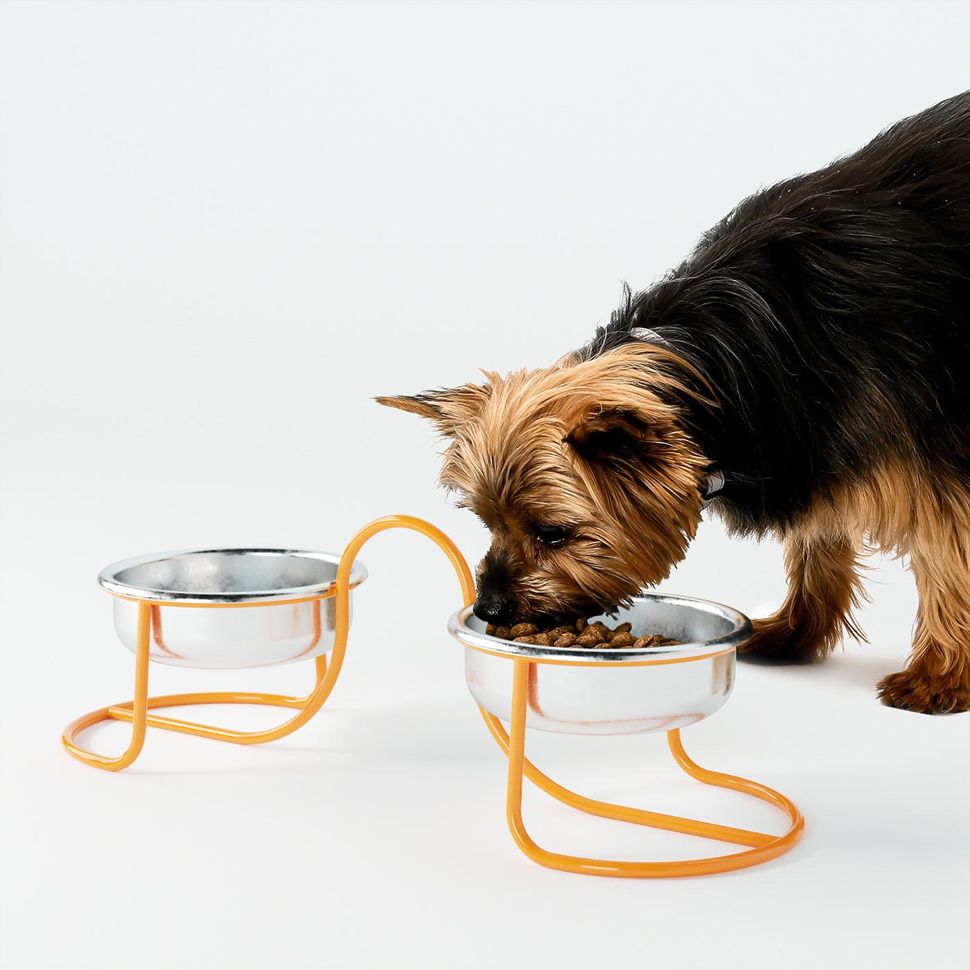 animals,bowl,design,dogs,hamitsaev,home,metal,Pet