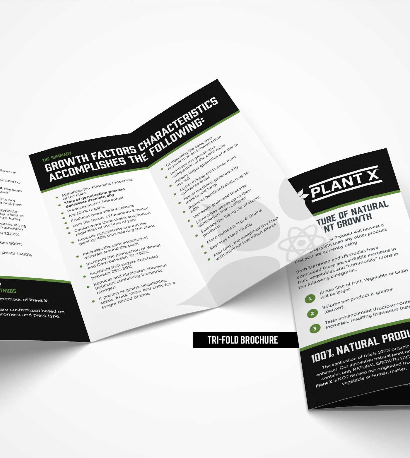 b2b black bold branding  brochure clean environment graphic design  green Packaging