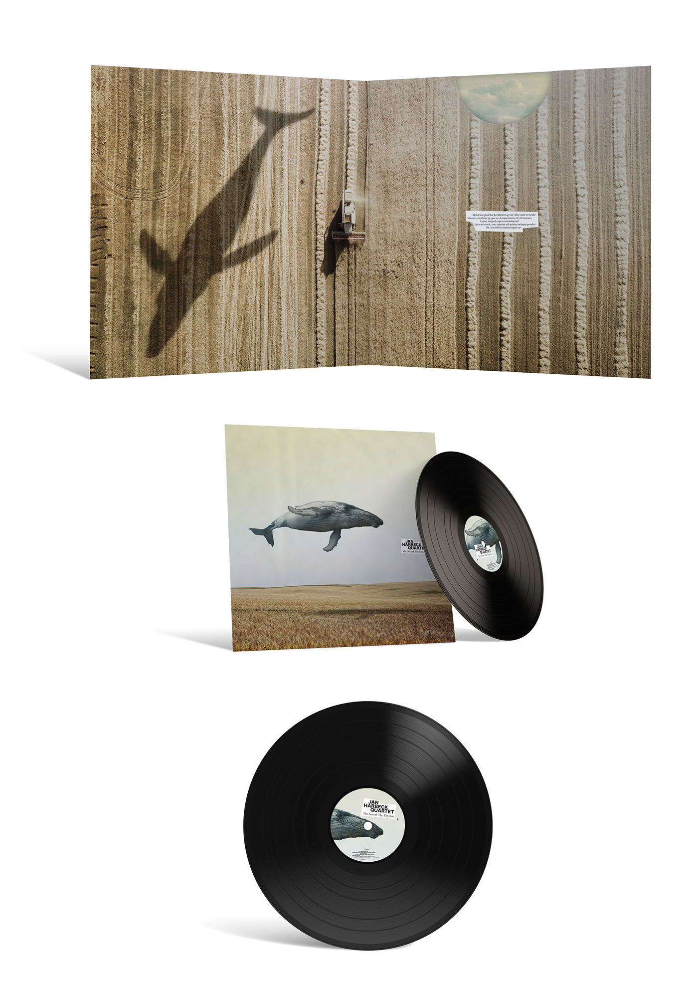 vinyl cover album cover Packaging
