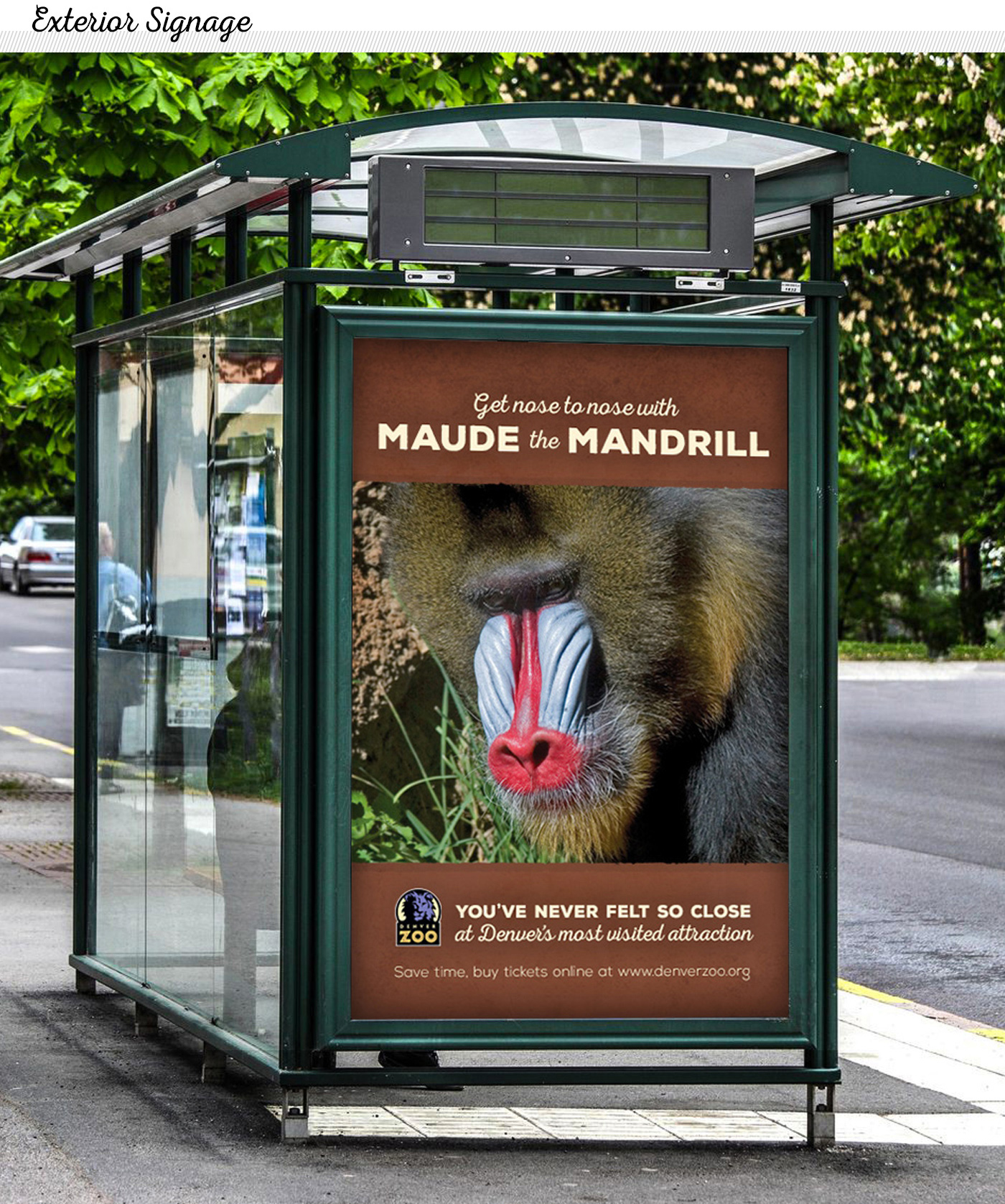 Denver Zoo Ad Campaign On Behance
