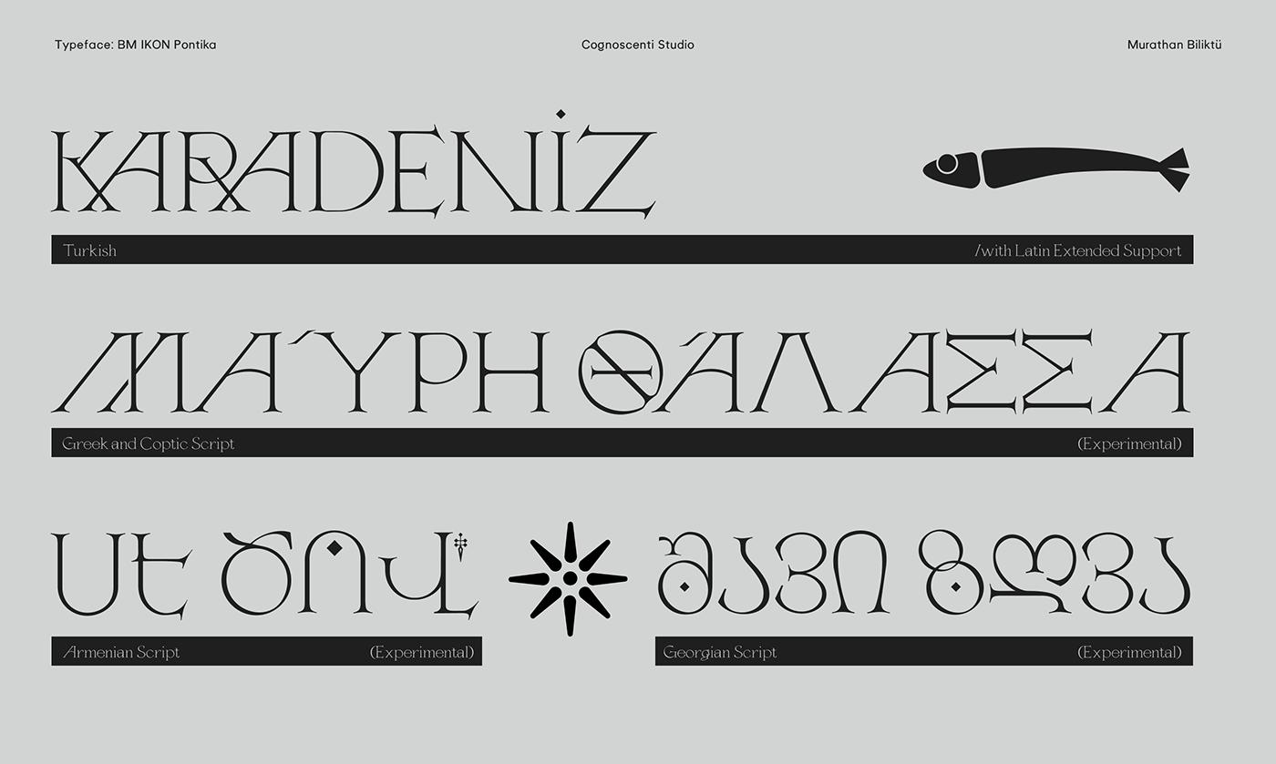 brand,branding ,Classical,editorial,font,logo,serif,type,type design,typography