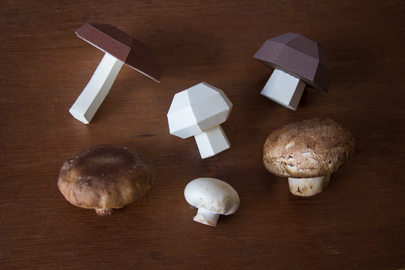 papercraft paperfood Pear radish Mushrooms nardalepes guardabosques lowpoly paperkits DIY